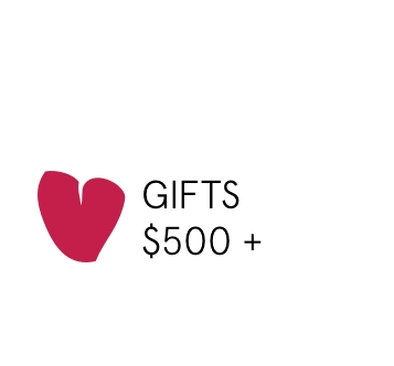Valentine's day gift over $500